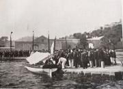1902_Pellitan