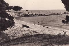 Marine_211