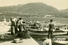 Marine_76