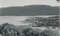Port_1411